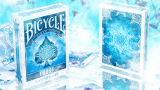 Bicycle- Frost Deck